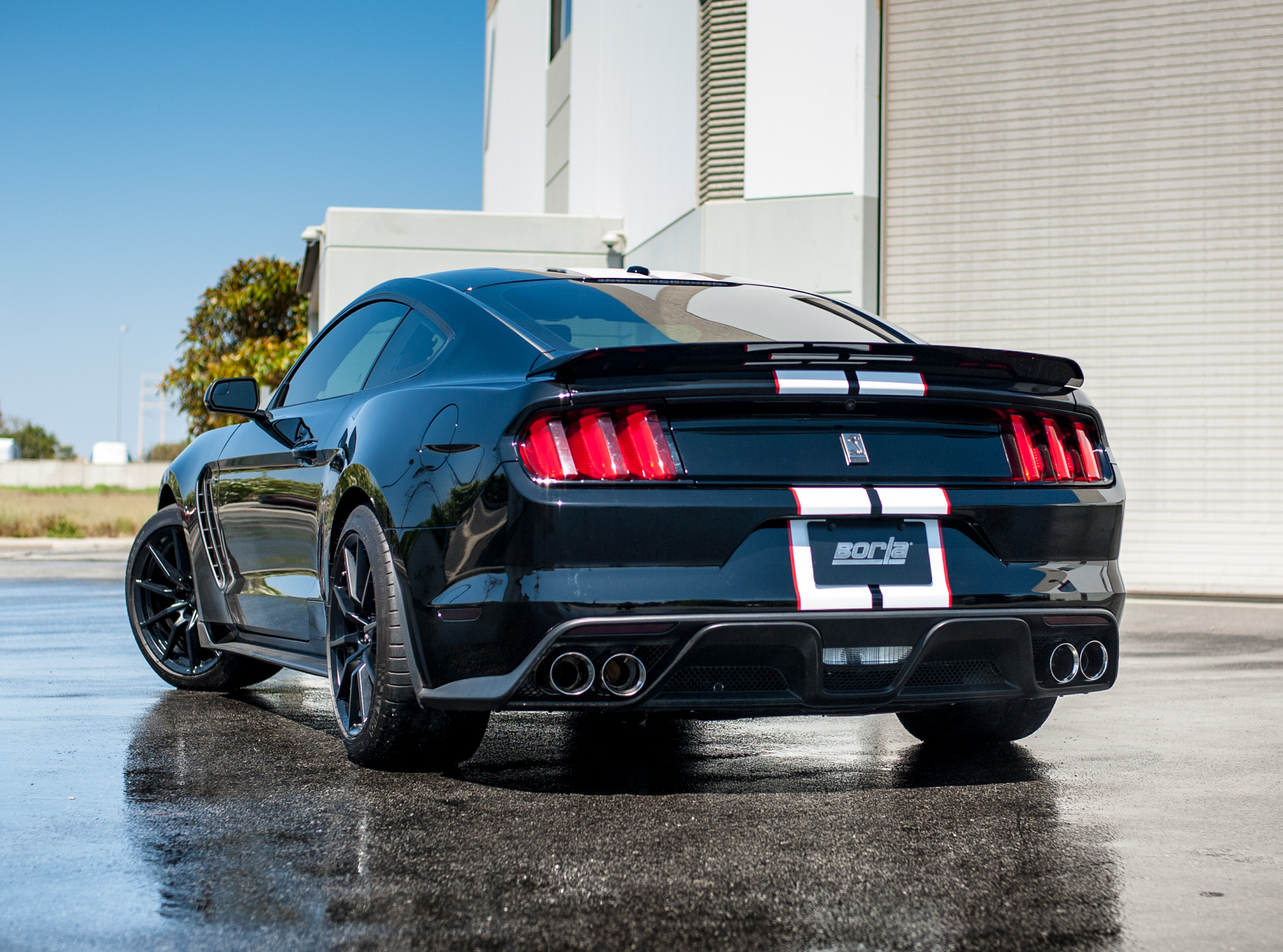 borla cat back exhaust for the mustang