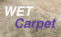 Can You Vacuum Wet Carpet - Don't Do it! - Them Vacuums