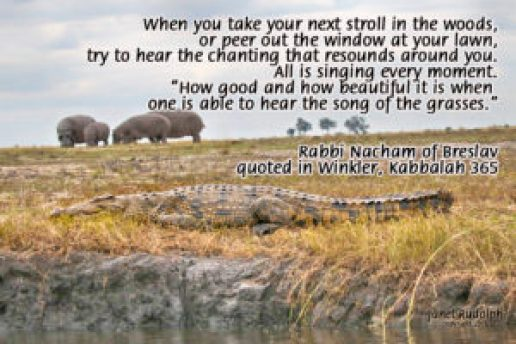African Tableau/Kabbalah quote Janet Rudolph