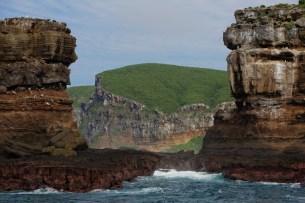 Darwin Island 2