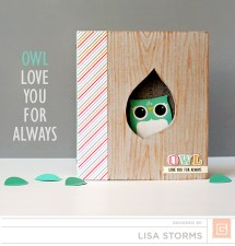 owl-mini-album