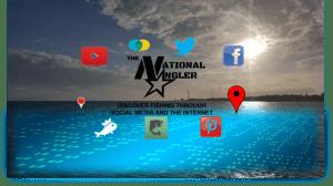 Internet and Social Media Fishing