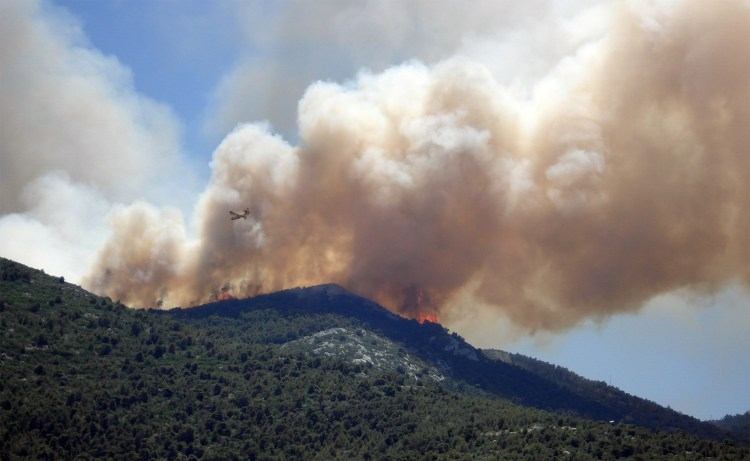 Wildfire - the two largest in California history occurred in Cleveland National Forest