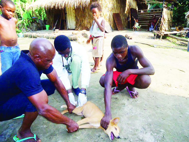 Dogs disappear as Ekiti residents turn to dog meat