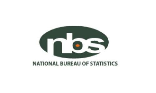 NBS names top lenders in capital import - The Nation Newspaper