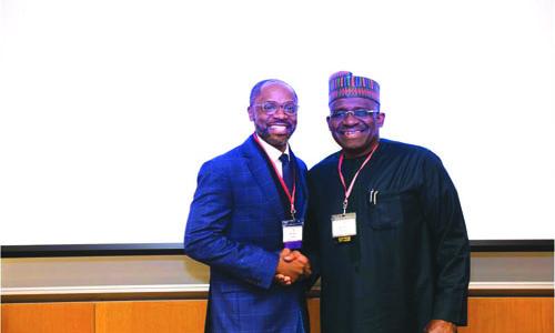 Invest in your continent, Olagunju urges Diaspora Africans