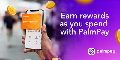 PalmPay raises $40m from Tecno Mobile - The Nation Newspaper