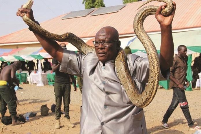 Yobe community where snakes are friends with human beings