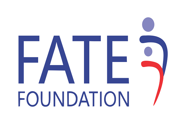 FATE Foundation, Facebook to support 360 SMEs - The Nation Nigeria