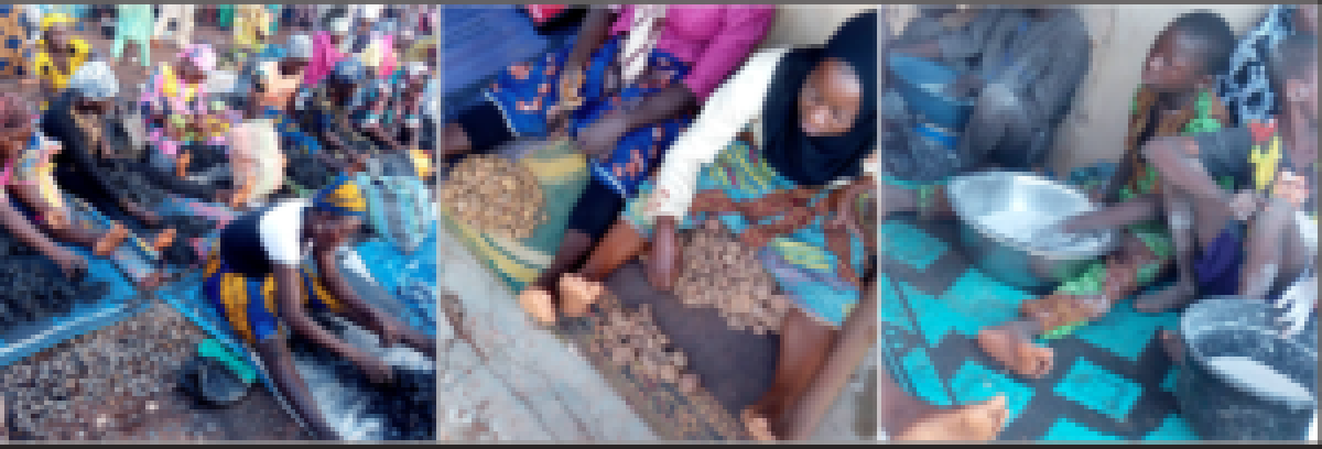 •WOMEN COUNTING CHARCOAL GAVE BIRTH PREMATURELY OR HAD STILL BIRTH; THOSE COUNTING STONES ARE LOOKING FOR HUSBANDS; CHILDREN