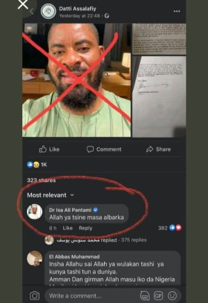 Fresh controversy over how Pantami's verified Facebook page attacks the activist