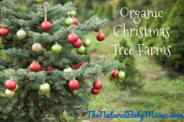 Organic Christmas Tree Farms by state Natural Baby Mama