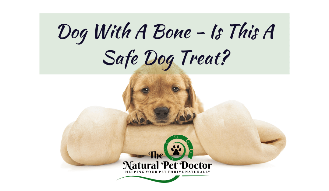 Dog With A Bone – Is This A Safe Dog Treat?