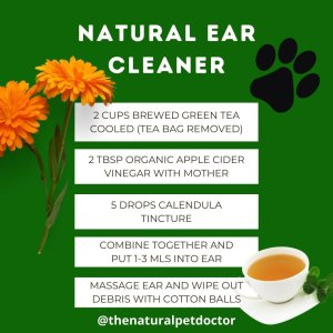 natural homemade dog ear cleaner for ear infection