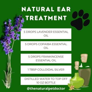 natural ear treatment for infection