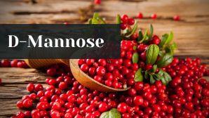 cranberries for dog UTI