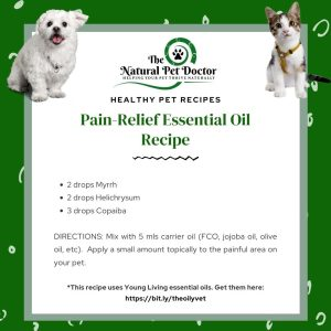 natural pain essential oils for dog leg strain