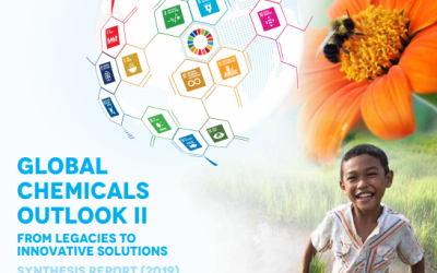 Landmark Report on Chemicals Launched: Global Chemicals Outlook II