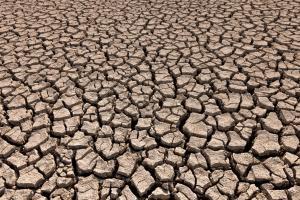 1200-18098106-desertification