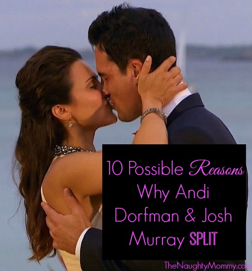 Andi Dorfman and Josh Murray-- 10 Possible Reasons for Split