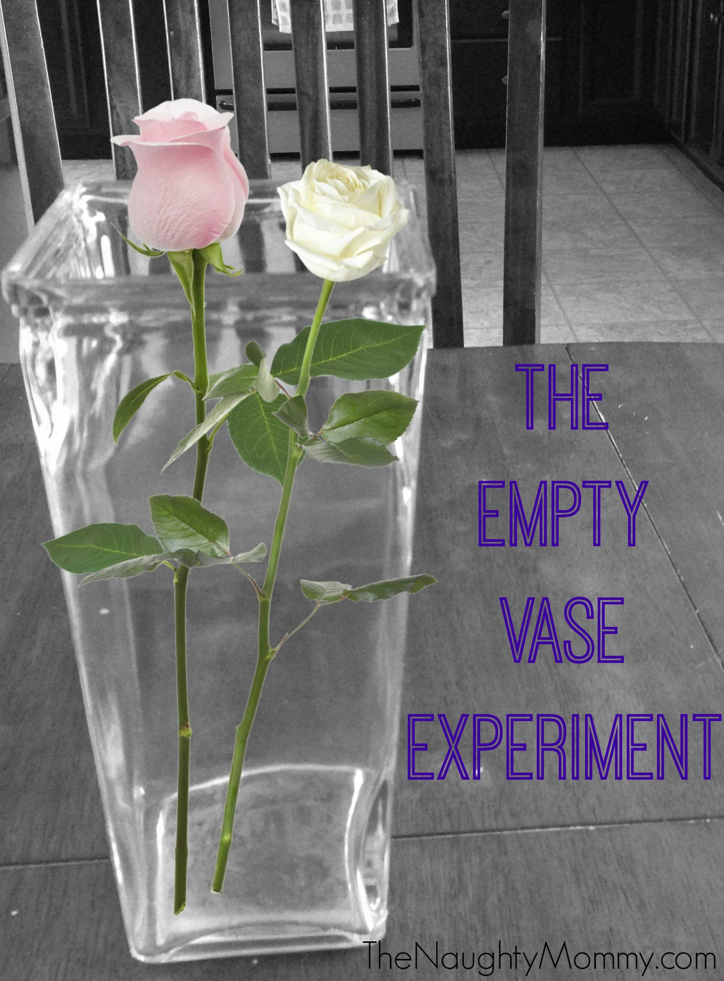 The empty vase experiment the naughty mommy the empty vase experiment reviewsmspy