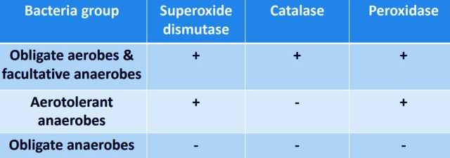 Distribution of superoxide dismutase, catalase & peroxidase in bacteria with different O2 tolerance. Bacterial Physiology