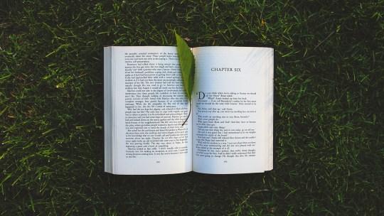 I consigli dell'estate: 10 libri da portare in vacanza