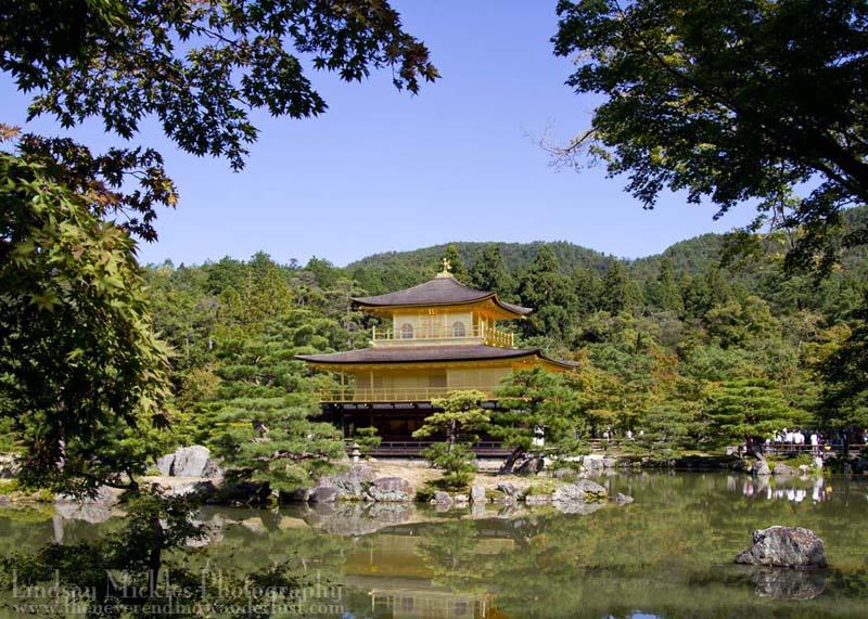 Kinkakuji (金閣寺, Golden Pavilion)