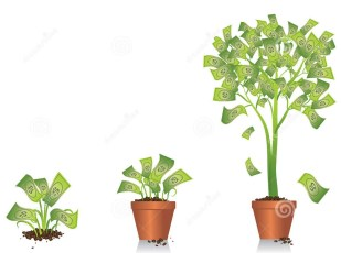 money-tree-growing-illustration-small-plant-developing-32182527.jpg