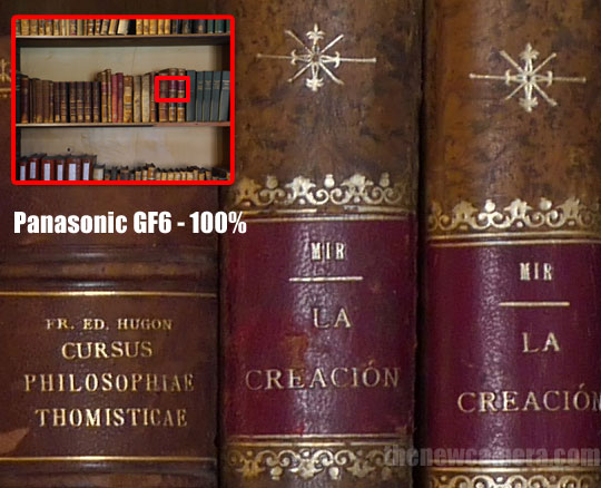 Panasonic GF6 @ 100%