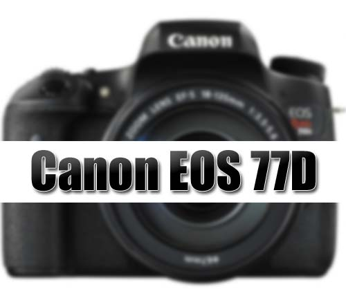 Canon 77D image