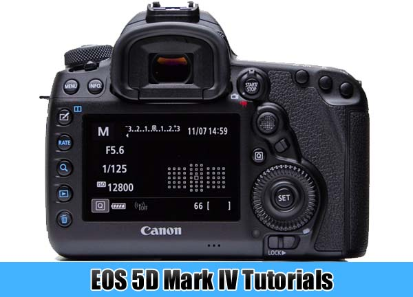Canon 5D Mark IV free guides