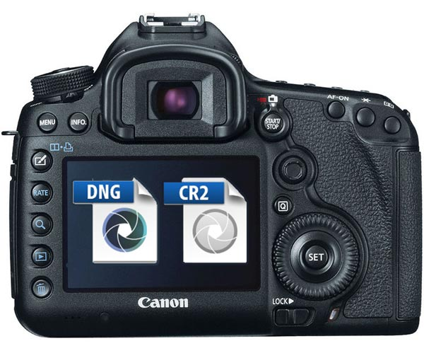 Canon Rumors « NEW CAMERA