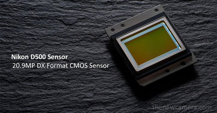 Nikon-D500-sensor-image