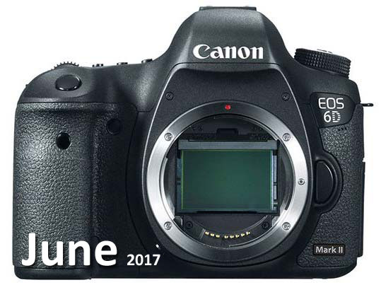 Canon 6D Mark II June