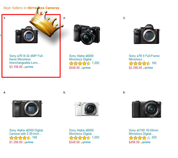 Sony A7R III - Top Selling Mirrorless Camera at Amazon and B&H « NEW ...