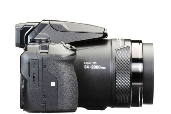 Nikon P900 image