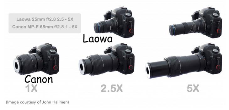 Canon lens vs laowa