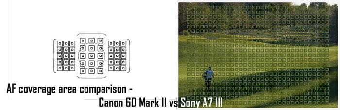 Sony A7 III vs Canon 6D II