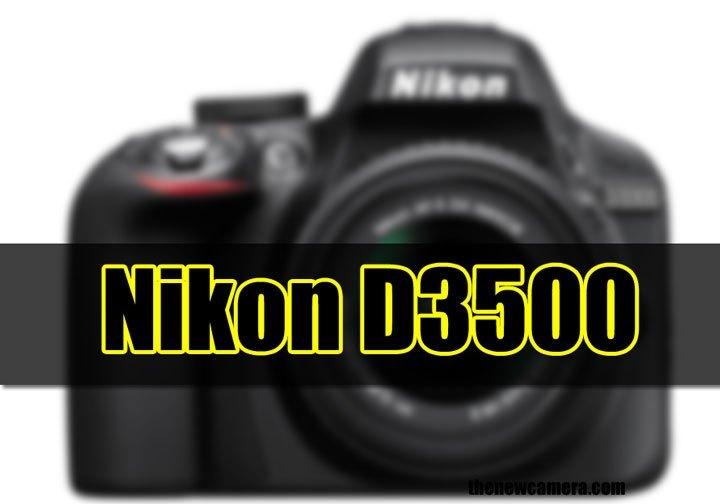 Nikon D3500 in horizon