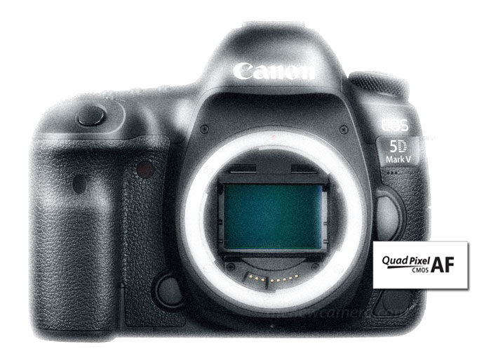 Canon 5D Mark V « NEW CAMERA