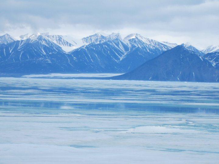 Beautiful-Arctic_1_optimized