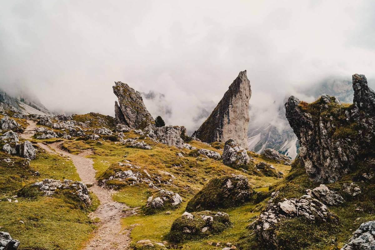Pieralongia hike