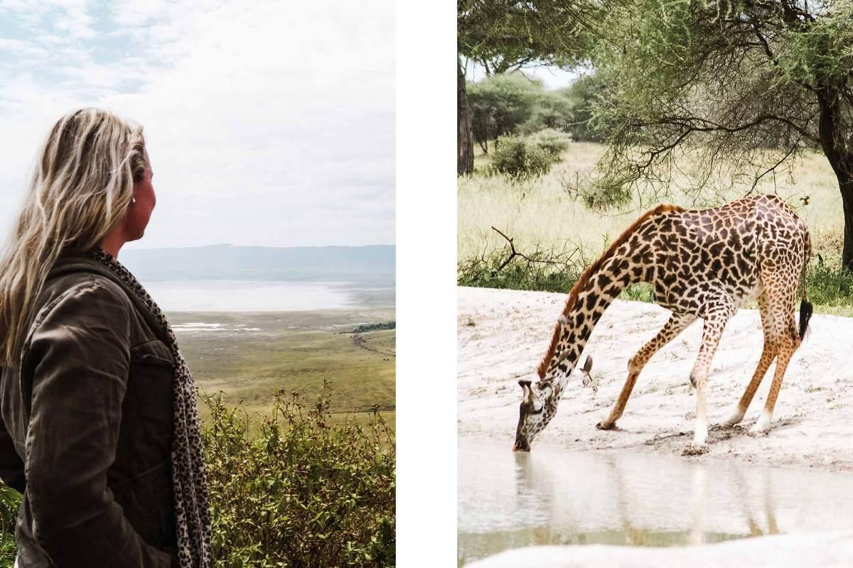 Big Five in Tanzania spotten