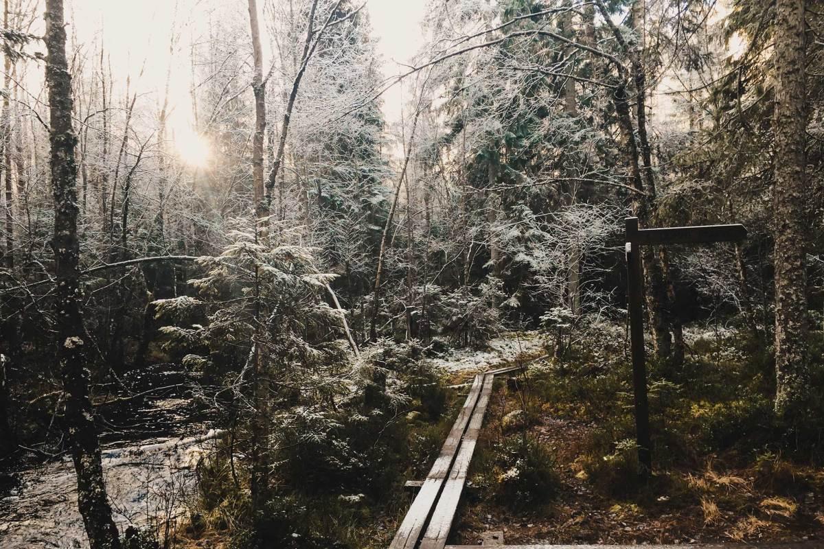 Natuurpark Dumme Mosse in Jönköping