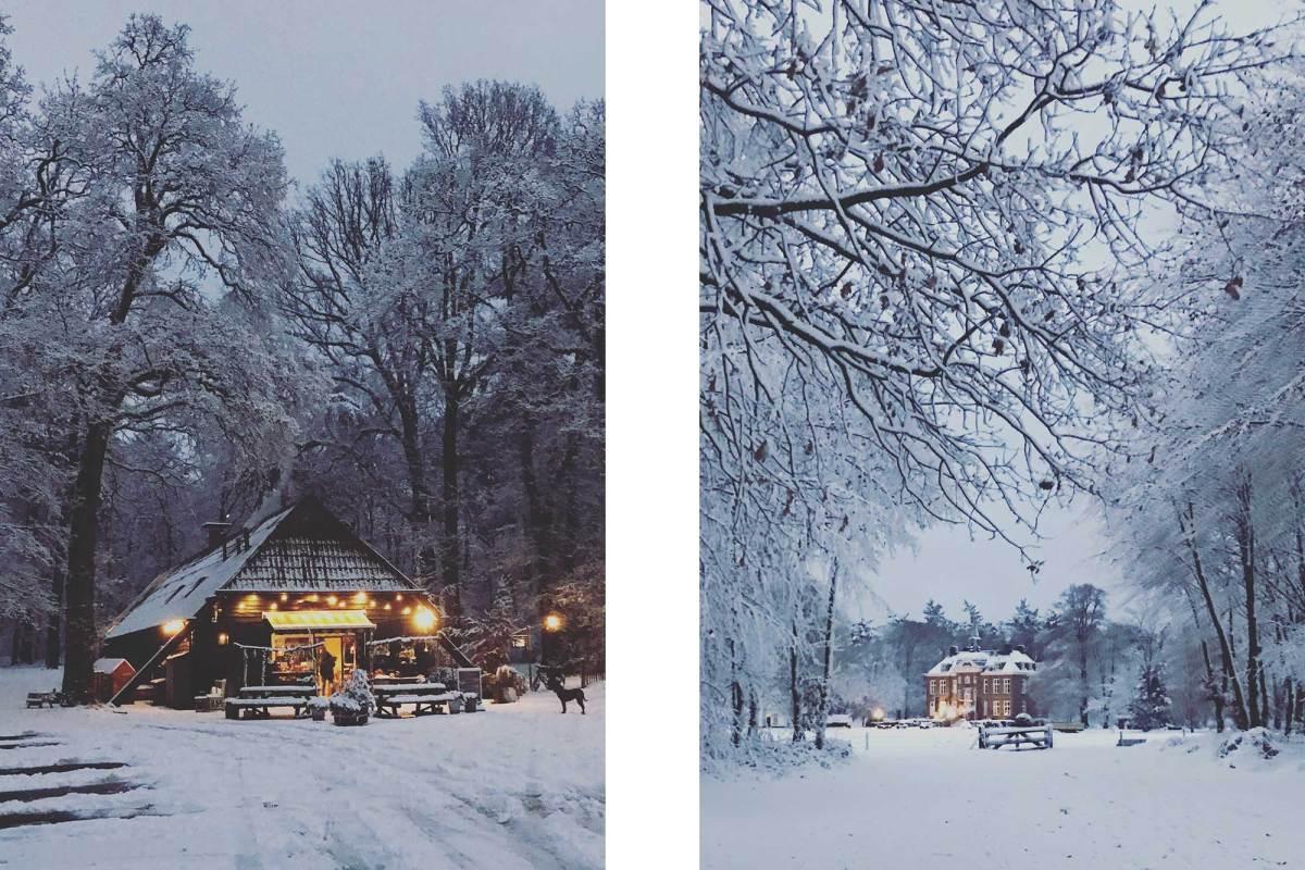 Het Hoekelumse bos en kasteel Hoekelum