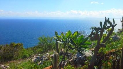 Overlooking Samaná Bay