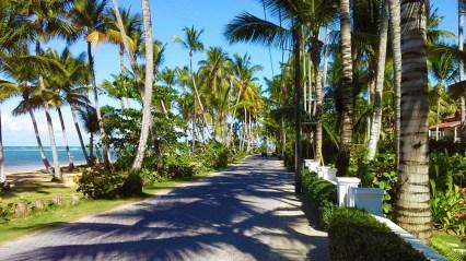 A cruise through paradise