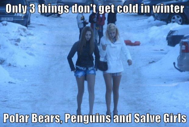 3 things dont get cold in winter