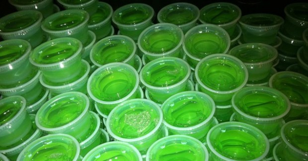 Jello Shots Lime St. Patricks Day Newport